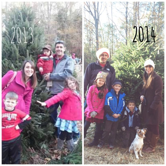 "2013 tree picking, pregnant with Gideon trying to find smiles in the ""today.""  2014 tree picking pregnant with BF5, once again trying to find smiles in my today...all the while wondering if this Monday's ultrasound will be different."